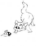 coccinelle et un chat