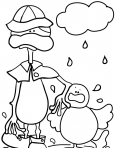 copains canards sous la pluie