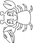 crabe qui sourit