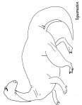 dinosaure diplodocus