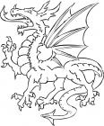 Dragon avec des ailes