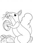 écureuil qui donne sa noisette
