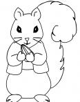 écureuil qui mange une noisette