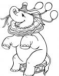éléphant du cirque joue aux ballons