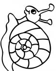 escargot heureux