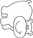 hippopotame heureux