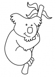 Koala accroché à une branche