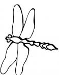 libellule qui vole