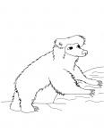 ours escalade un rocher