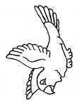 perroquet en plein vole