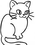 petit chat mignon
