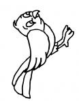 petit oiseau de la forêt