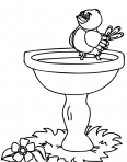 petit oiseau sur une fontaine