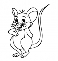 petite souris dans l'herbe