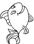 poisson de mer qui rigole