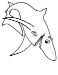 requin blanc très content