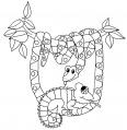 Serpent suspendu à un arbre