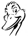 tête de canard