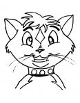 tête de chat rigolote