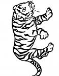 tigre de la savane