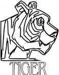 tigre regarde son papa
