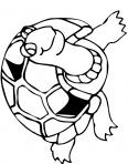 tortue avec des yeux globuleux