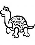 tortue rigole sous le soleil