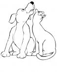 un chien et un chat ensemble