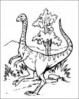 un dinosaure fait le beau
