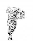 un tigre se repose tranquille