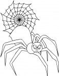 une araignée fait sa toile