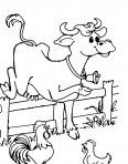 vache qui saute au dessus de l'enclos